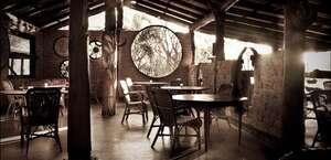 Lazy Lizard Tavern