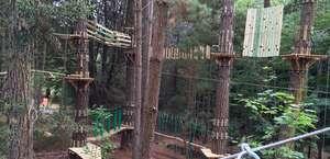Trees Adventure - Underwood Park