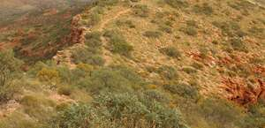 Larapinta Trail by World Expeditions