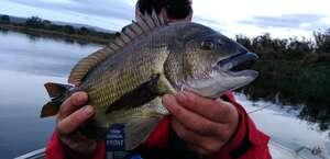 Unique Fishing Tours Tasmania