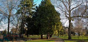 Roanoke Park