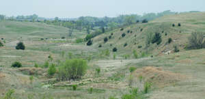 Ashfall Fossil Beds State Historical Park