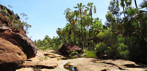 Finke Gorge National Park