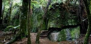 Waitomo Walkway
