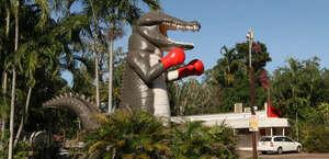 The Big Boxing Crocodile