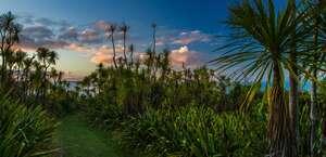 Tiritiri Matangi Island Reserve