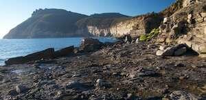 Fossil Cliffs Walk