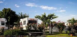 Amber Kiwi Holiday Park & Motels
