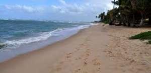 Skaket Beach
