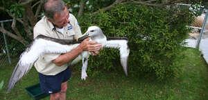 Whangarei Native Bird Recovery Centre