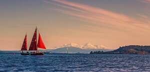 Sail Fearless