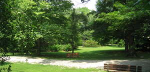 Merion Botanical Park