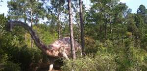 Elberta Dinosaurs
