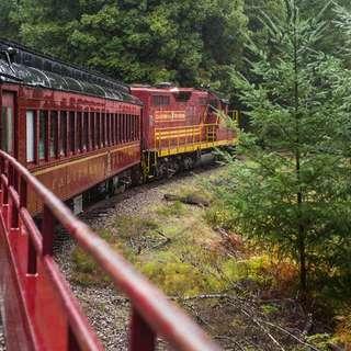 The Skunk Train