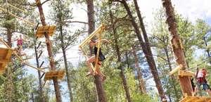 Aerial Adventure Park and Zip Line