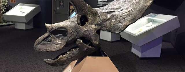 Mesalands Dinosaur Museum and Natural Sciences Laboratory