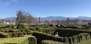 The Garden Maze