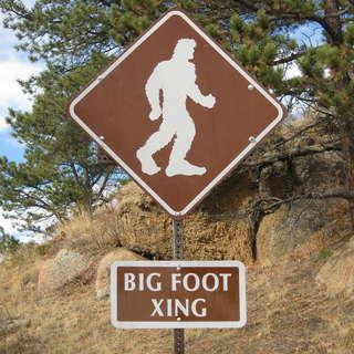 Big Foot Sign