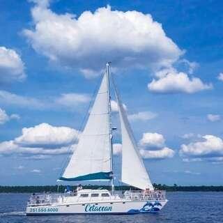 Cetacean Cruises