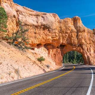 Red Canyon Arc