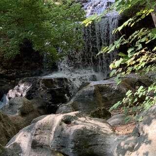 Tanyard Creek Nature Trail