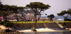 Pacific Grove Plaza