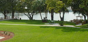 Dinky Dock Park