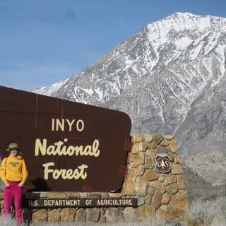 Inyo National Forest