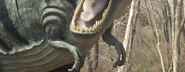 Dinosaur Place At Nature's Art