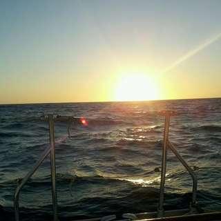 Pacific Sailing Ventura