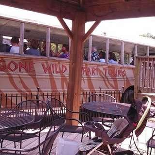 Gone Wild Safari