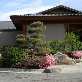 Anderson Japanese Garden