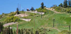 Steamboat Springs Alpine Slide