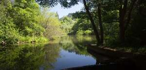 Tilden Nature Area