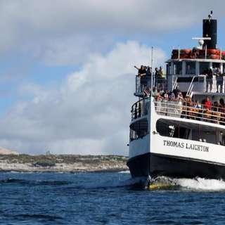 Isles of Shoals Steamship Cruises