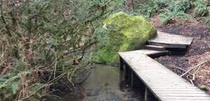 Ravenna Creek