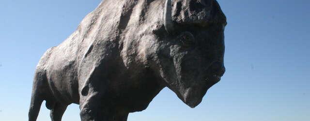 Frontier Village & National Buffalo Museum