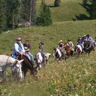 Swift Creek Outfitters & Horseback Adventures