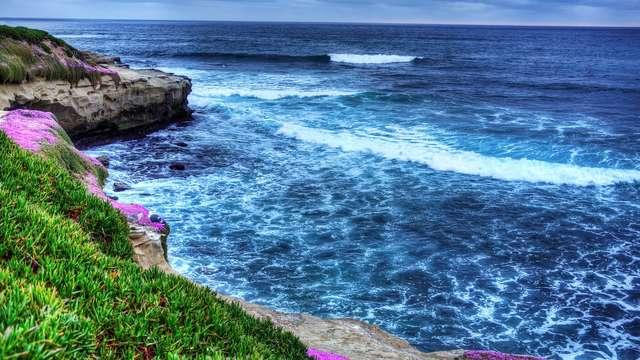 La Jolla Cove Beach, San Diego - CA | Roadtrippers