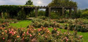 Boerner Botanical Gardens