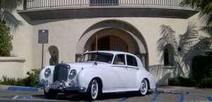White Rose Limousine Inc.