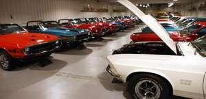 Telstar Mustang-Shelby-Cobra Museum