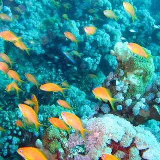 Humboldt State Marine Lab & Aquarium