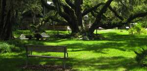 Sugar Mill Botanical Gardens