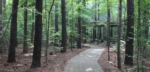 Hemlock Bluffs State Natural Area