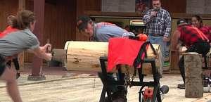 Dells Lumberjack Show
