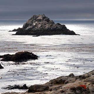 Point Lobos Ranch