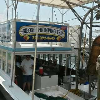 The Biloxi shrimping trip