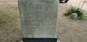 Gravestone of a Real Vampire