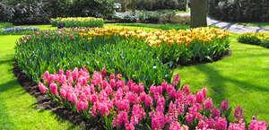 Botanical Gardens At Heritage Park